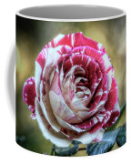 Striped Rose  Coffee Mug
