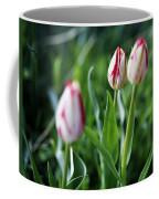 Striped Tulips In Spring Coffee Mug