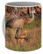 Strolling Sandhill Crane Family Coffee Mug