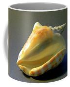 Strombus Inermis Seashell Coffee Mug