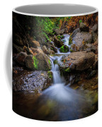 Strongs Canyon Cascades Coffee Mug