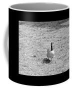 Strutting His Stuff Black And White Coffee Mug