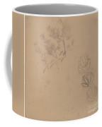 Study For A Border Design With A Sketch Of A Tree Coffee Mug