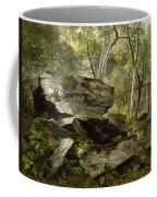 Study From Nature   Rocks And Trees Coffee Mug