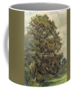 Study Of An Ash Tree Coffee Mug