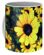 Stunning Black Eyed Susan  Coffee Mug