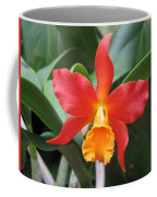 Stunning Cattleya Coffee Mug