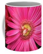 Stunning Gerbera Coffee Mug