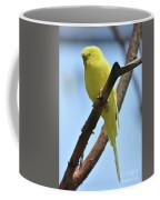 Stunning Little Yellow Budgie Parakeet In Nature Coffee Mug
