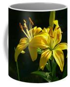 Stunning Coffee Mug