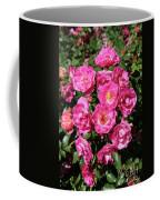 Stunning Pink Roses Coffee Mug