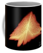 Sturgeon Scales, X-ray Coffee Mug