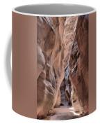 Subdued Colors Of Buckskin Coffee Mug