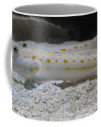 Substrate-sifting Diamond Watchman Goby Pair Coffee Mug