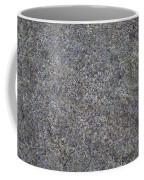 Subtle Lichen On Granite Texture Coffee Mug