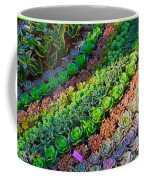 Succulent 1 Coffee Mug