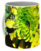 Succulent Close Up Coffee Mug