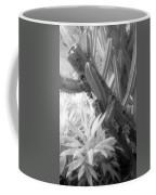 Succulent Delight Coffee Mug