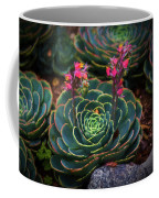 Succulent Flowers Coffee Mug