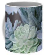 Succulents 2 Coffee Mug