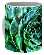 succulents Rutgers University Gardens Coffee Mug