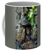 Sugar From The Sun Waterfall Coffee Mug