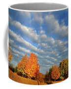 Sugar Maple Sunrise Along Route 31 Coffee Mug
