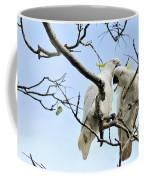 Sulphur Crested Cockatoos Coffee Mug