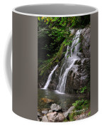 Summer At Glen Moss Falls Coffee Mug