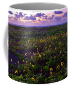 Summer Beach Daisies 1 Coffee Mug