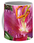 Summer Botanical Garden Art Pink Calla Lily Flower Baslee Troutman Coffee Mug
