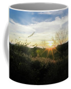 Summer Day Going Into Evening.  Coffee Mug