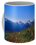 Summer Fading Coffee Mug