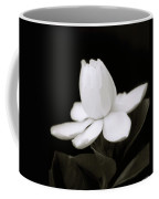 Summer Fragrance Coffee Mug