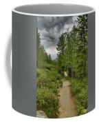 Summer Hike And Storm Clouds Coffee Mug