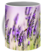 Summer Lavender  Coffee Mug