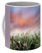 Summer Meadow Flowers In Grass At Sunset. Coffee Mug