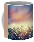 Summer Meadow Flowers In Grass At Sunset. Vintage Coffee Mug