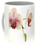 Summer Orchids Coffee Mug