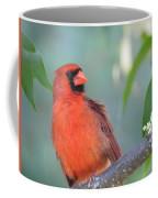 Summer Perch Coffee Mug