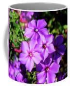 Summer Purple Phlox Coffee Mug