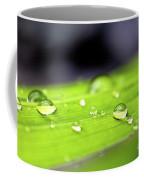 Summer Rain 2 Coffee Mug
