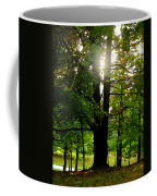 Summer Sun Coffee Mug
