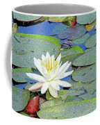 Summer Water Lily Coffee Mug