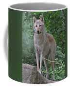 Summer Wolf Coffee Mug