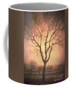 Summerland Light In Winter Coffee Mug
