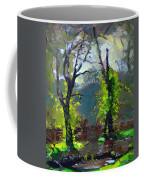 Sun Ater Rain Coffee Mug