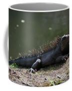 Sun Bathing Iguana Beside A Body Of Water Coffee Mug
