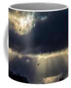 Sun Beams And Seagulls Coffee Mug