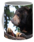 Sun Bear-7859 Coffee Mug
